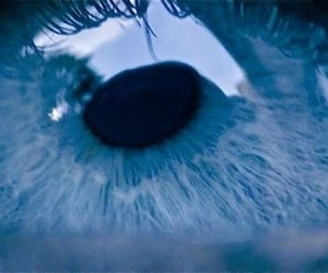 blue, photography, and blue eyes image