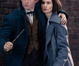 newt scamander, fantastic beasts, and newtina image