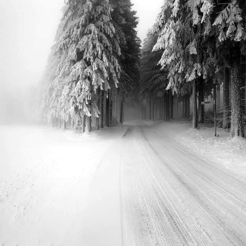 Winter Shared By Super On We Heart It
