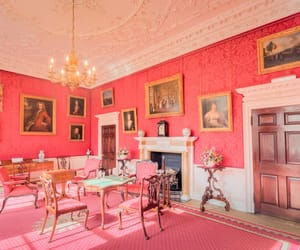 bright pink, living room, and office image
