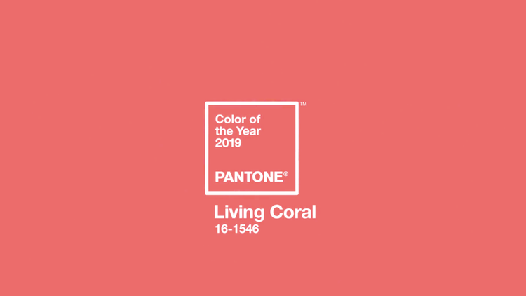 Living Coral 2k19 On We Heart It