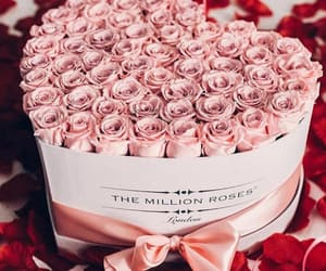 beautiful, box, and roses image