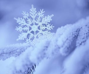 gorgeous, magic, and snowflake image