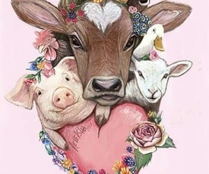 animal liberation, libertad, and veganism image
