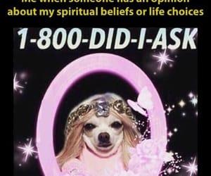 magick, meme, and voodoo image