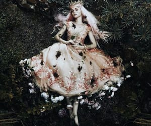 fantasy, flowers, and photography image