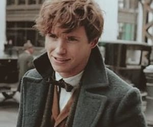 newt scamander and fantastic beasts image