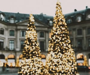 christmas tree, cities, and christmas decor image