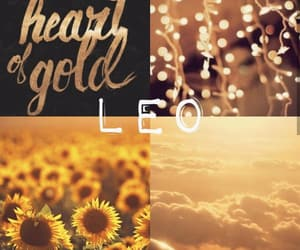 aesthetic, gold, and August image