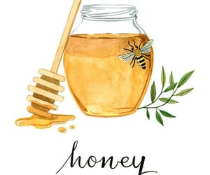 animals, drawing, and honey image