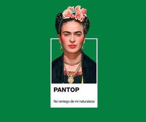 Frida, pantone, and pantop image