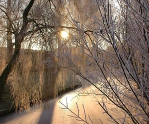 photography, wonderland, and snow image
