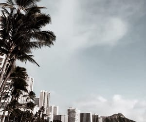 beach, city, and travel image