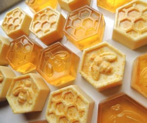 yellow, bee, and honey image