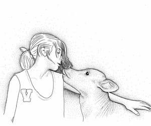 amor, vegan, and go vegan image