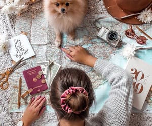 article, fun, and travel image