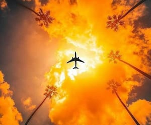 summer, airplane, and orange image