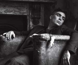 cillian murphy and so it goes image