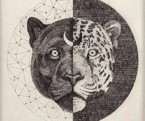 art, animal, and moon image