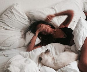 bed, girl, and animal image
