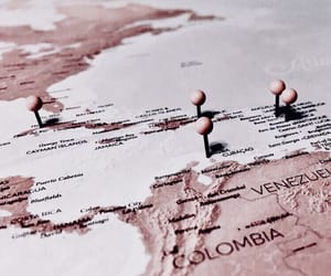rose gold, travel, and map image