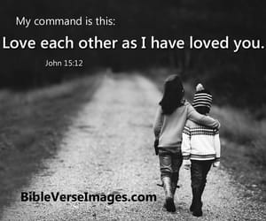 believe, love each other, and Christ image