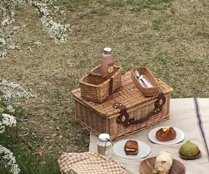 picnic, aesthetic, and soft image