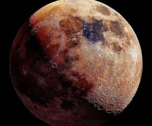 astrology, moo, and moon image
