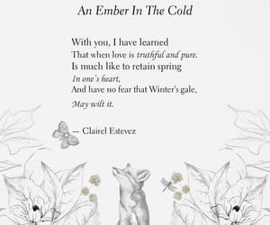 poem, beautiful, and quotes image