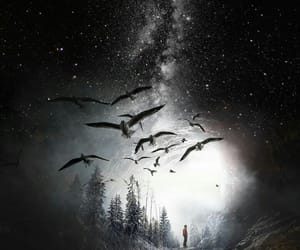 bird, space, and men image