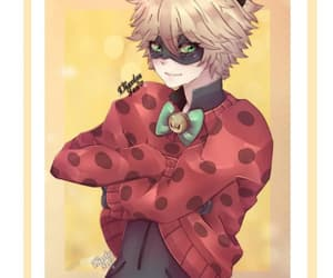 Chat Noir, cutey, and miraculous ladybug image