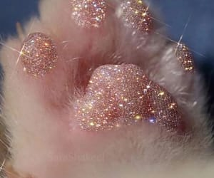 cat, glitter, and pink image