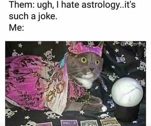 astrology and cat image