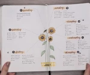 bullet journal and amandarachlee image