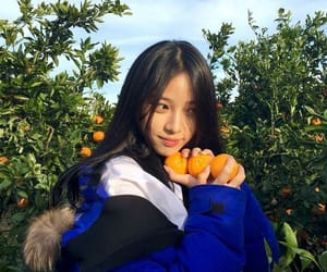 aesthetic, clementine, and nature image
