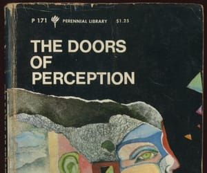 book, art, and the doors of perception image