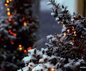 christmas lights, lights, and winter image