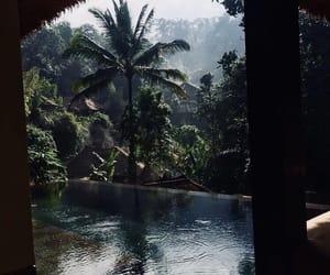 travel, pool, and nature image
