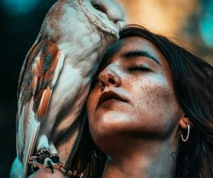 nature, wild, and woman image