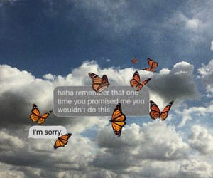 aesthetics, butterfly, and clouds image