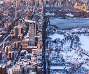 new york, city, and snow image