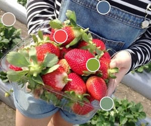 strawberry, food, and summer image