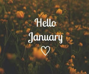 hello, january, and flowers image