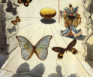 butterfly and salvador dali image