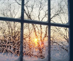 winter, snow, and window image