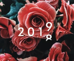 new year and 2019 image