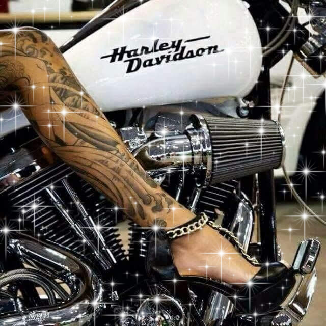 I Would Love To Wrap My Legs Around This Harley Davidson Too!!