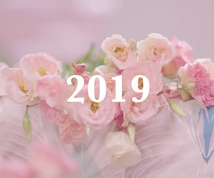 edit, flowers, and happy new year image