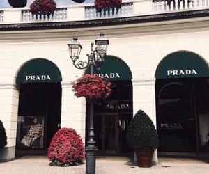 luxury and Prada image