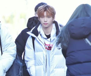 Chan, felix, and han image